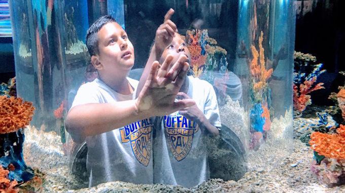 Buffalo PAL Field Trip To Aquarium